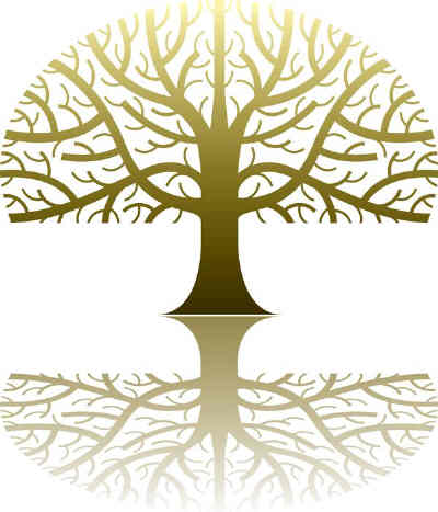 Matthew 1 - Genealogy Name List